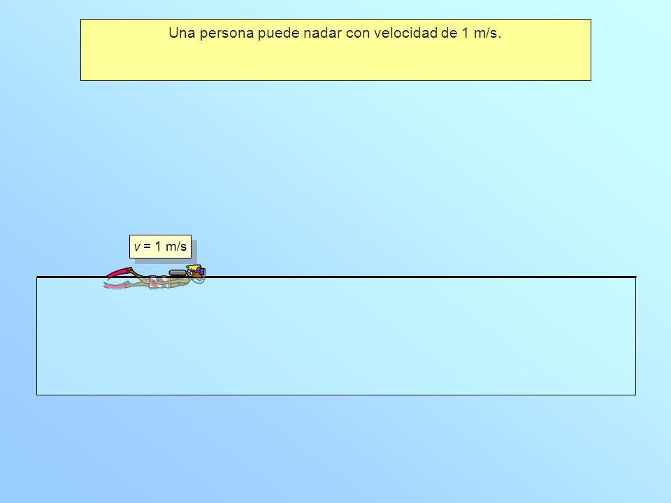 Una persona puede nadar con velocidad de 1 m/s. v = 1 m/s