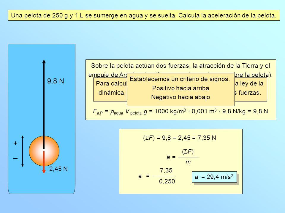 Una pelota de 250 g y 1 L se sumerge en agua y se suelta. Calcula la aceleración de la pelota. Sobre la pelota actúan dos fuerzas, la atracción de la