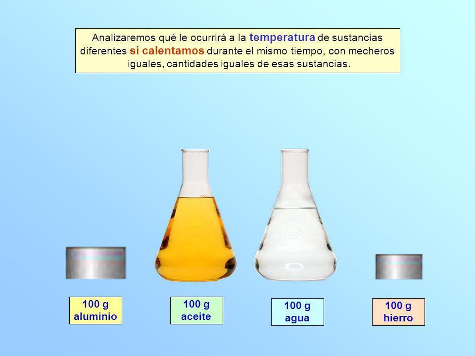 100 g aluminio 100 g agua 100 g aceite 100 g hierro Analizaremos qué le ocurrirá a la temperatura de sustancias diferentes si calentamos durante el mi