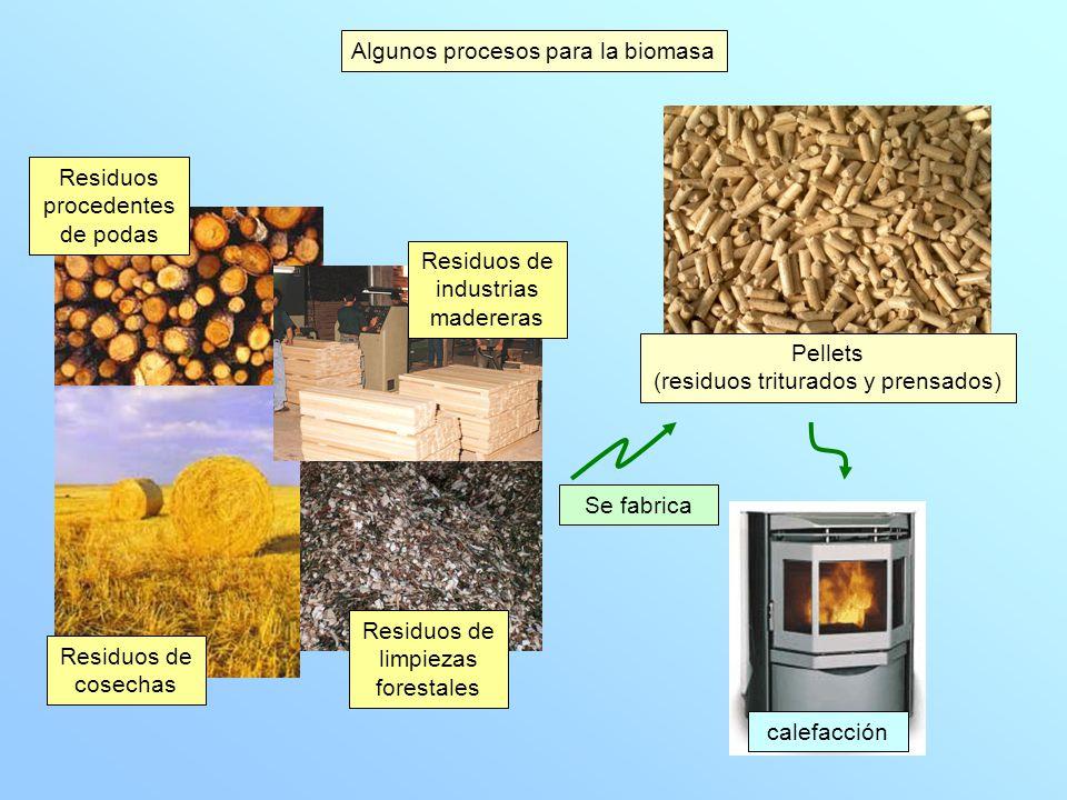 Producción de corriente eléctrica Combustión del orujillo en la planta de Villanueva del Arzobispo (Jaén) Orujillo Residuos sólidos Aceitunas Electricidad para 30 000 habitantes CO 2 evitado 123 200 t/año Algunos procesos para la biomasa produce
