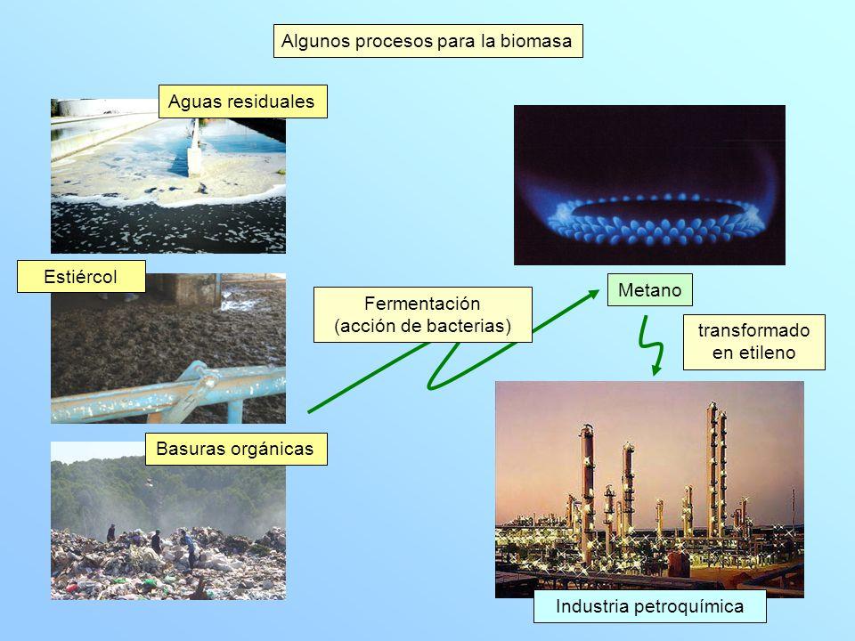 Algunos procesos para la biomasa Inconvenientes dispersión producción estacional baja densidad energética necesidad de transformación (en general) para su utilización costes de recolección, transporte y almacenamiento