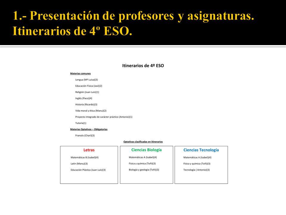 Cada docente establece sus criterios de evaluación de acuerdo a la Ley Orgánica de Educación (LOE) y a la Ley de Educación en Andalucía (LEA), existiendo materias de evaluación continua (inglés).