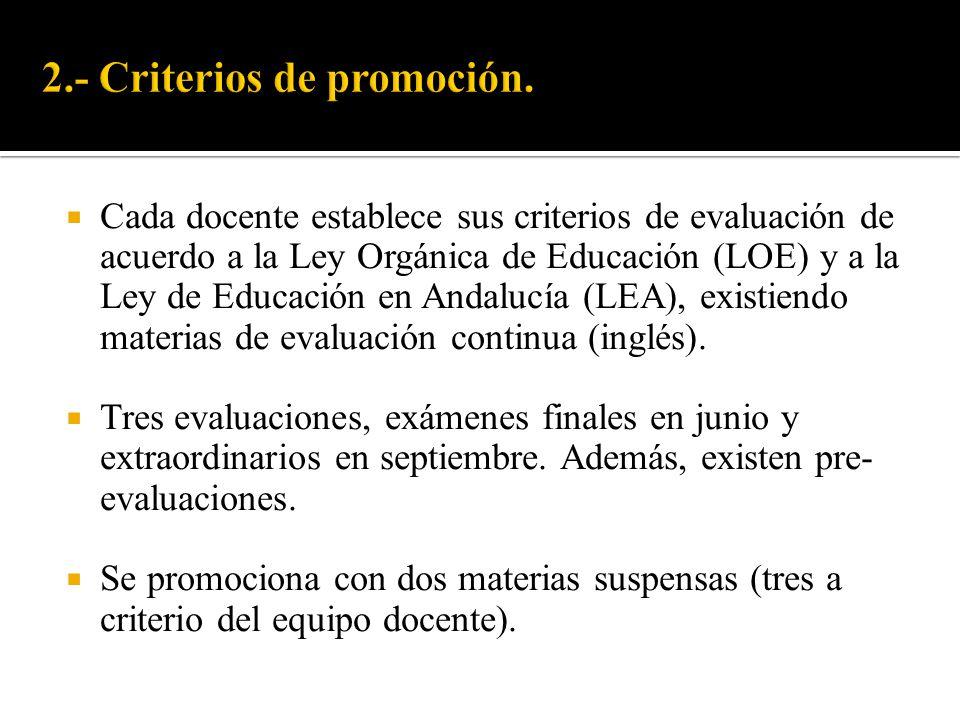 Cada docente establece sus criterios de evaluación de acuerdo a la Ley Orgánica de Educación (LOE) y a la Ley de Educación en Andalucía (LEA), existie
