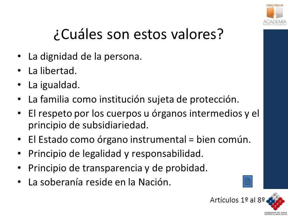 ¿Cuáles son estos valores? La dignidad de la persona. La libertad. La igualdad. La familia como institución sujeta de protección. El respeto por los c