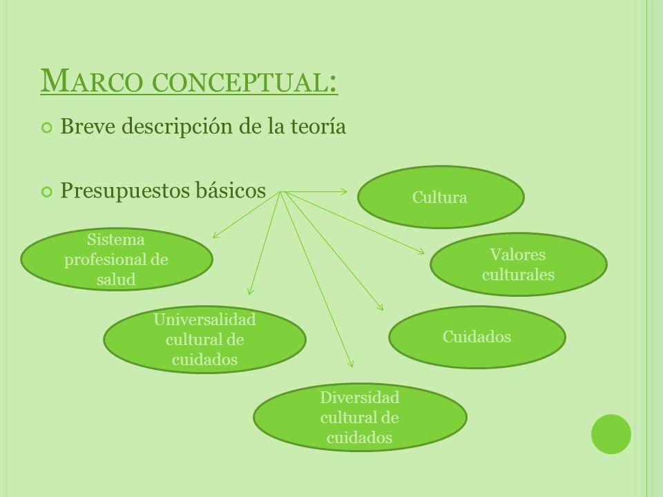 Conceptos interrelacionados Ambiente /Sociedad Salud/ Enfermedad Enfermería Ser humano