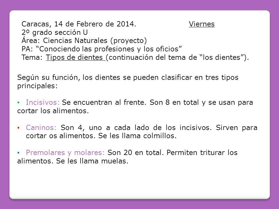 Caracas, 14 de Febrero de 2014.Viernes 2º grado sección U Área: Ciencias Naturales (proyecto) PA: Conociendo las profesiones y los oficios Tema: Tipos de dientes (continuación del tema de los dientes).