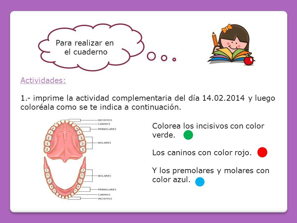 Para realizar en el cuaderno Actividades: 1.- imprime la actividad complementaria del día 14.02.2014 y luego coloréala como se te indica a continuación.