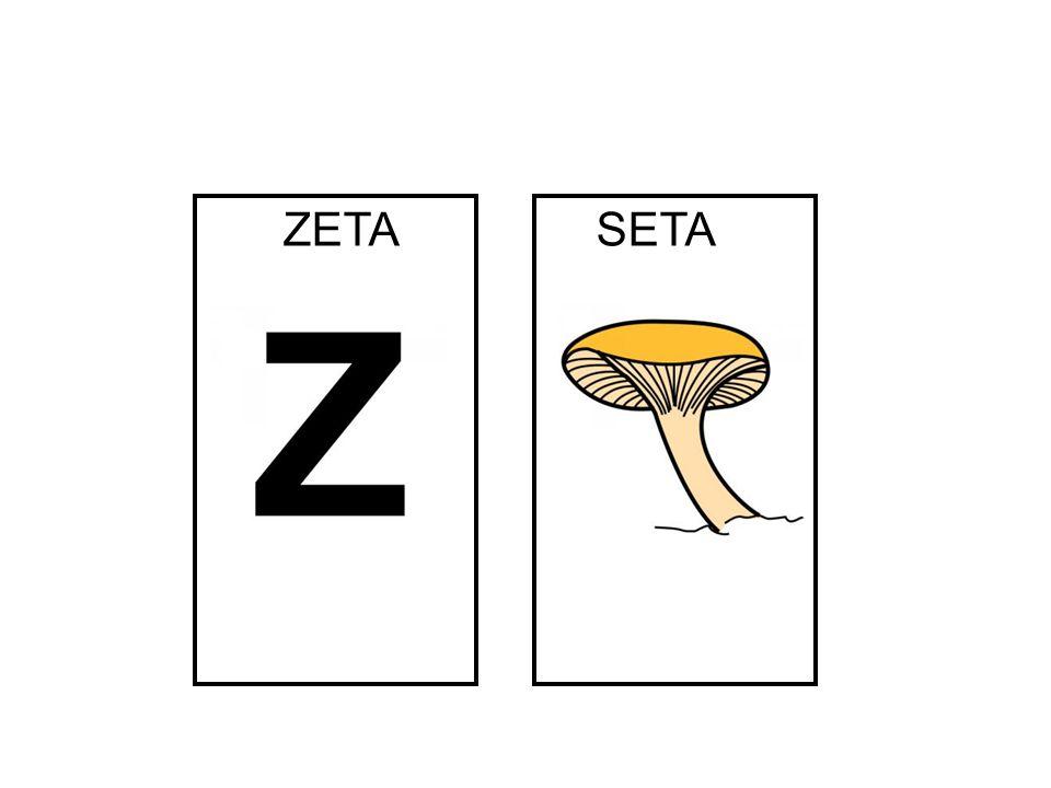 SETA ZETA