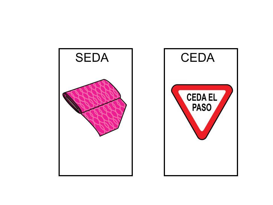 CEDA SEDA