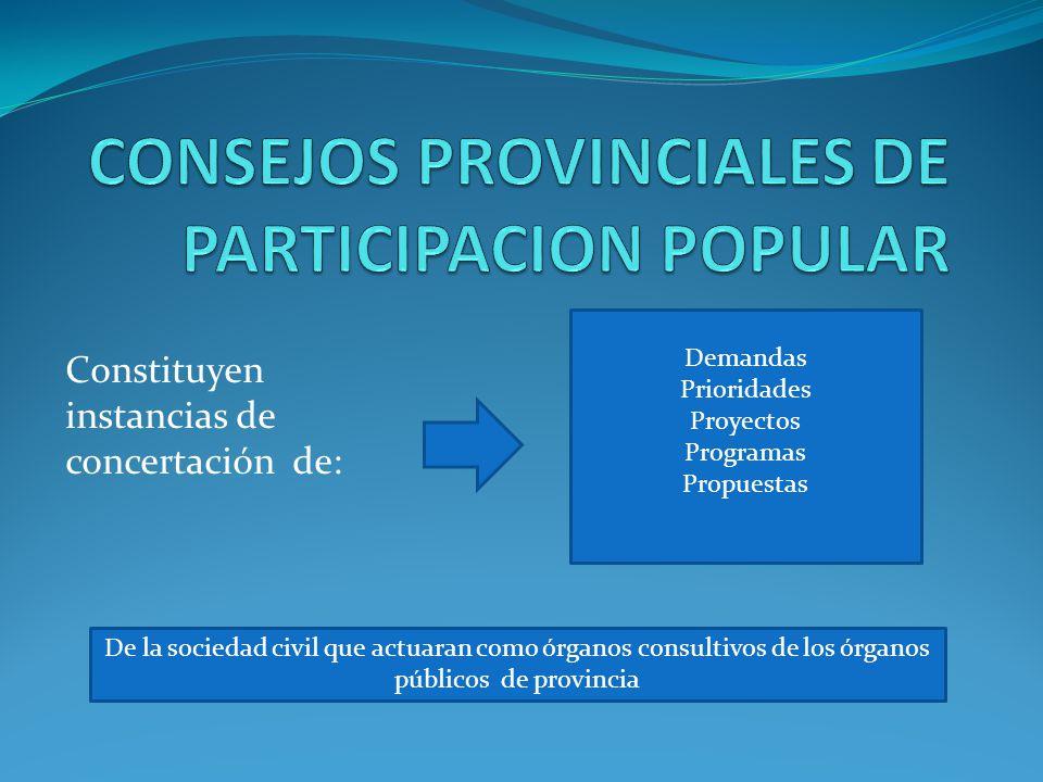 Constituyen instancias de concertación de: Demandas Prioridades Proyectos Programas Propuestas De la sociedad civil que actuaran como órganos consultivos de los órganos públicos de provincia