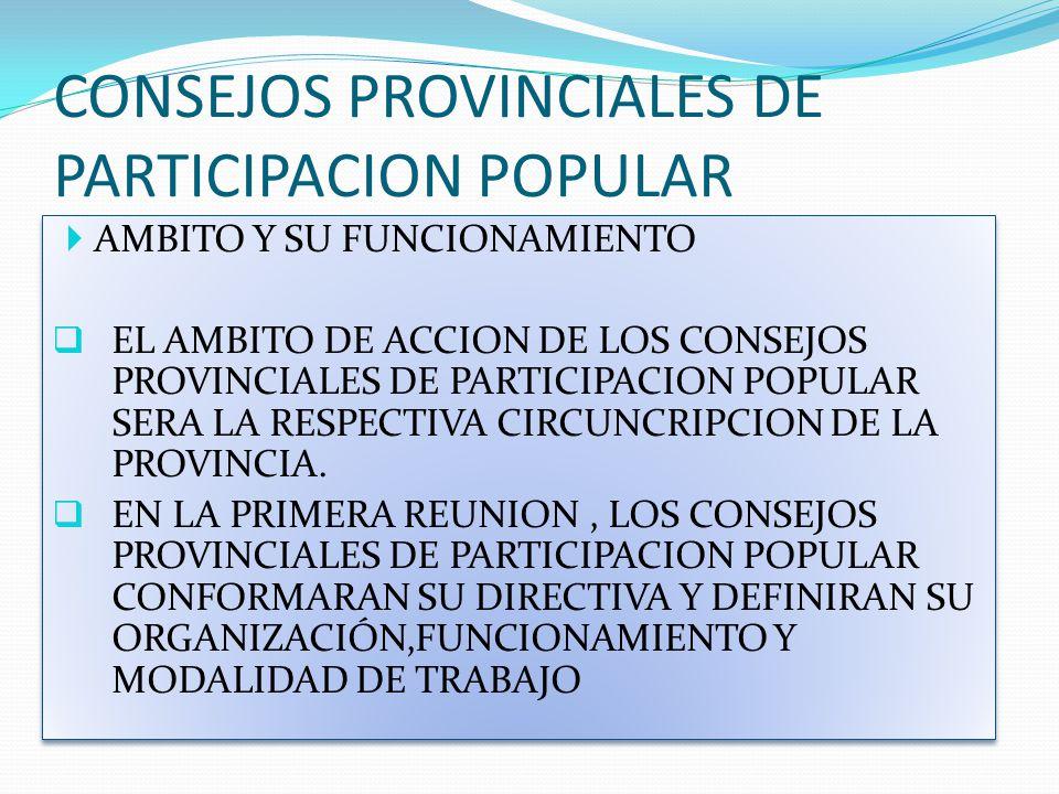 CONSEJOS PROVINCIALES DE PARTICIPACION POPULAR AMBITO Y SU FUNCIONAMIENTO EL AMBITO DE ACCION DE LOS CONSEJOS PROVINCIALES DE PARTICIPACION POPULAR SE