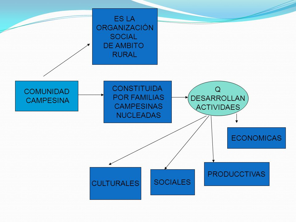 COMUNIDAD CAMPESINA ES LA ORGANIZACIÓN SOCIAL DE AMBITO RURAL CONSTITUIDA POR FAMILIAS CAMPESINAS NUCLEADAS Q DESARROLLAN ACTIVIDAES PRODUCCTIVAS ECON