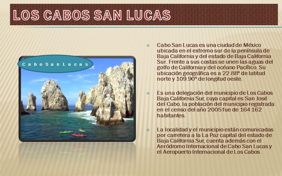 Cabo San Lucas es una ciudad de México ubicada en el extremo sur de la península de Baja California y del estado de Baja California Sur.