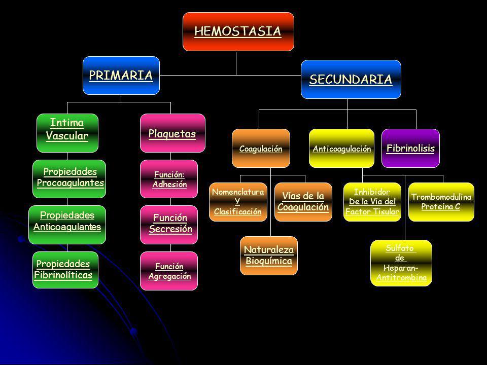 HEMOSTASIA PRIMARIA Sulfato de Heparan- Antitrombina Trombomodulina Proteína C Inhibidor De la Vía del Factor Tisular Naturaleza Bioquímica Vías de la