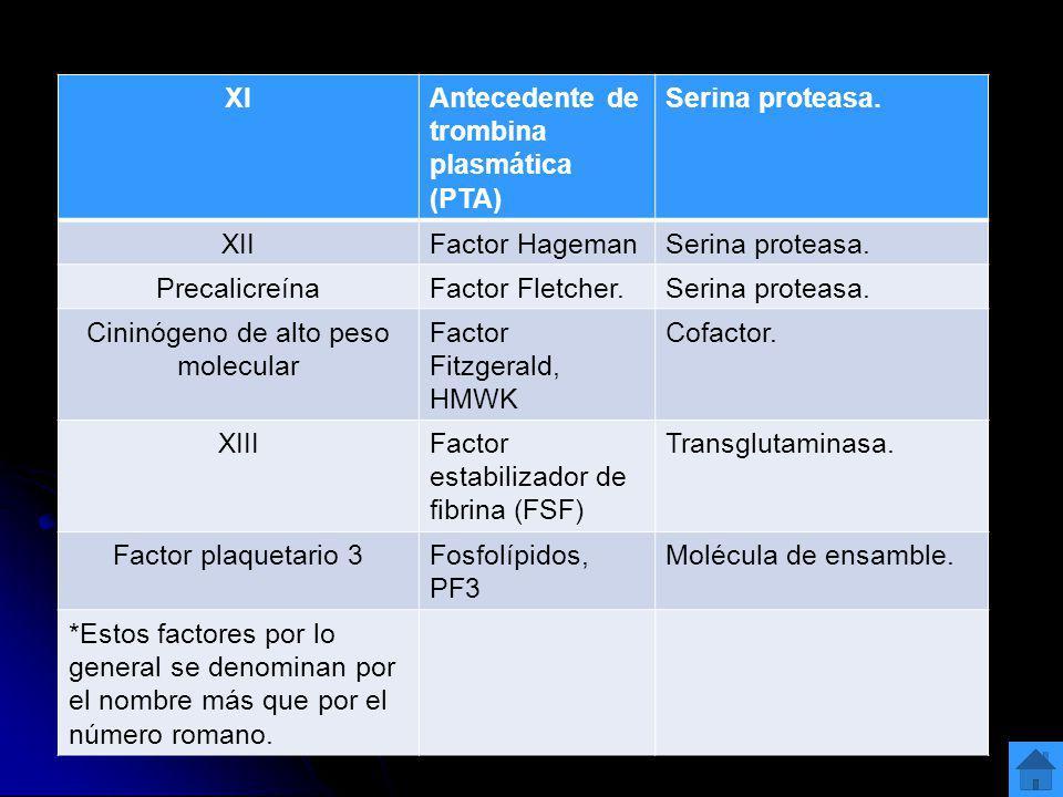 XIAntecedente de trombina plasmática (PTA) Serina proteasa. XIIFactor HagemanSerina proteasa. PrecalicreínaFactor Fletcher.Serina proteasa. Cininógeno