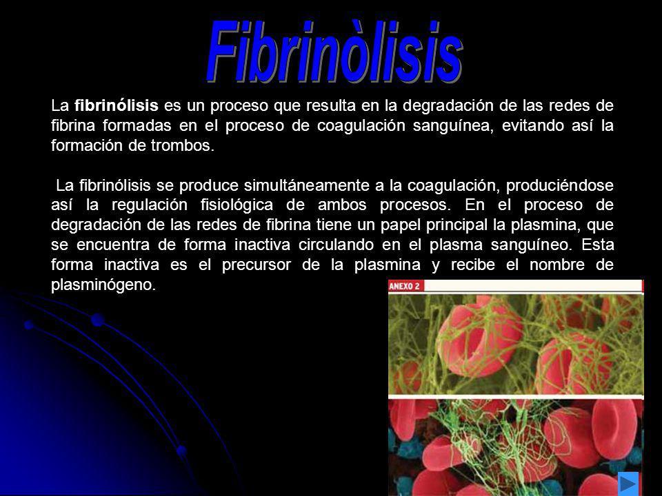 La fibrinólisis es un proceso que resulta en la degradación de las redes de fibrina formadas en el proceso de coagulación sanguínea, evitando así la f