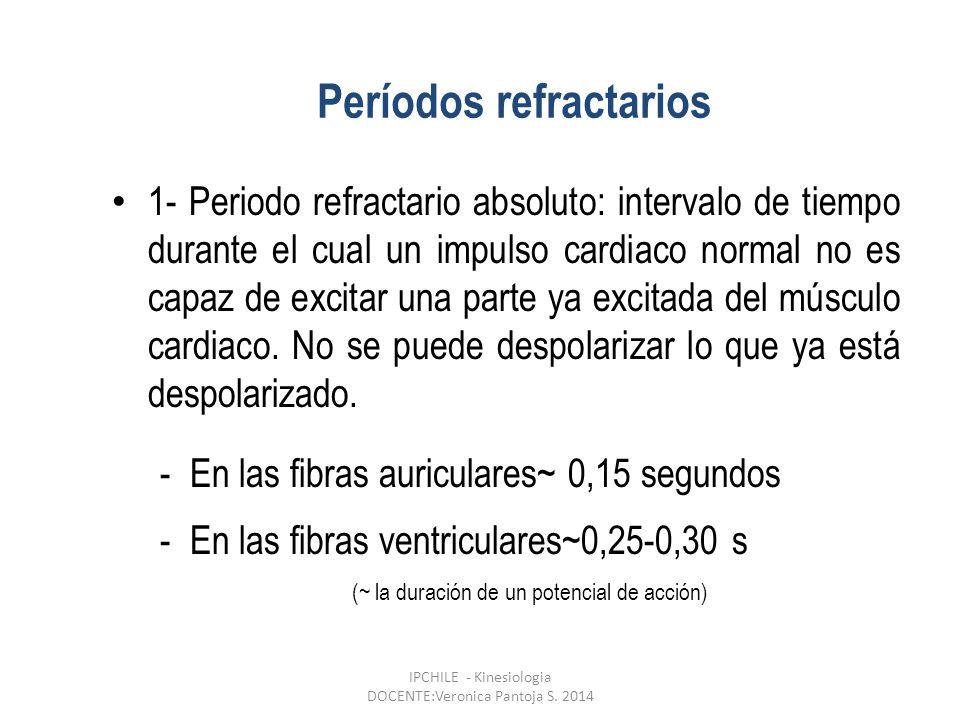1- Periodo refractario absoluto: intervalo de tiempo durante el cual un impulso cardiaco normal no es capaz de excitar una parte ya excitada del músculo cardiaco.