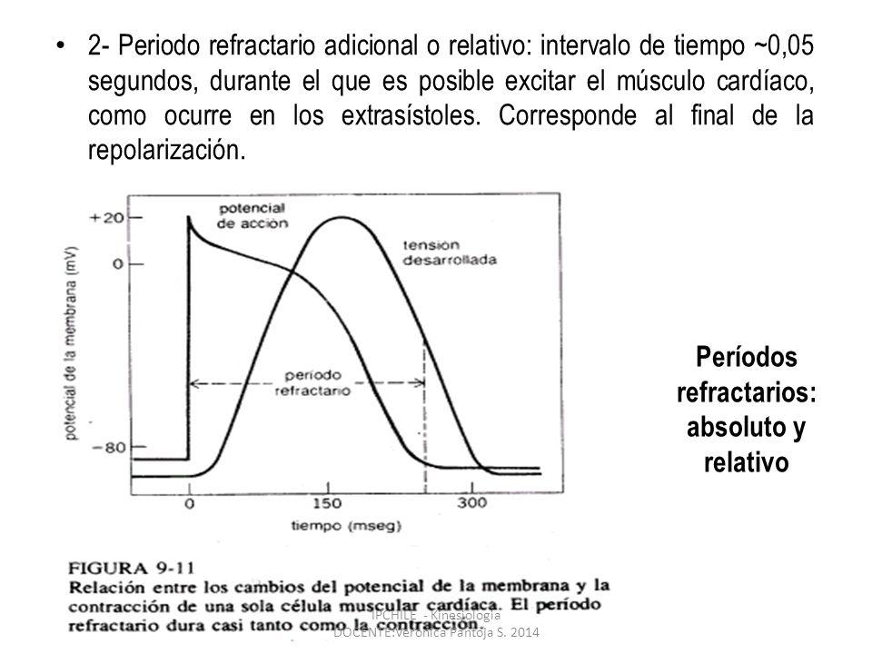 2- Periodo refractario adicional o relativo: intervalo de tiempo ~0,05 segundos, durante el que es posible excitar el músculo cardíaco, como ocurre en los extrasístoles.