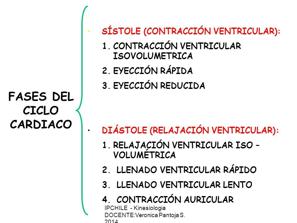 SÍSTOLE (CONTRACCIÓN VENTRICULAR): 1.CONTRACCIÓN VENTRICULAR ISOVOLUMETRICA 2.EYECCIÓN RÁPIDA 3.EYECCIÓN REDUCIDA DIÁSTOLE (RELAJACIÓN VENTRICULAR): 1.RELAJACIÓN VENTRICULAR ISO – VOLUMÉTRICA 2.