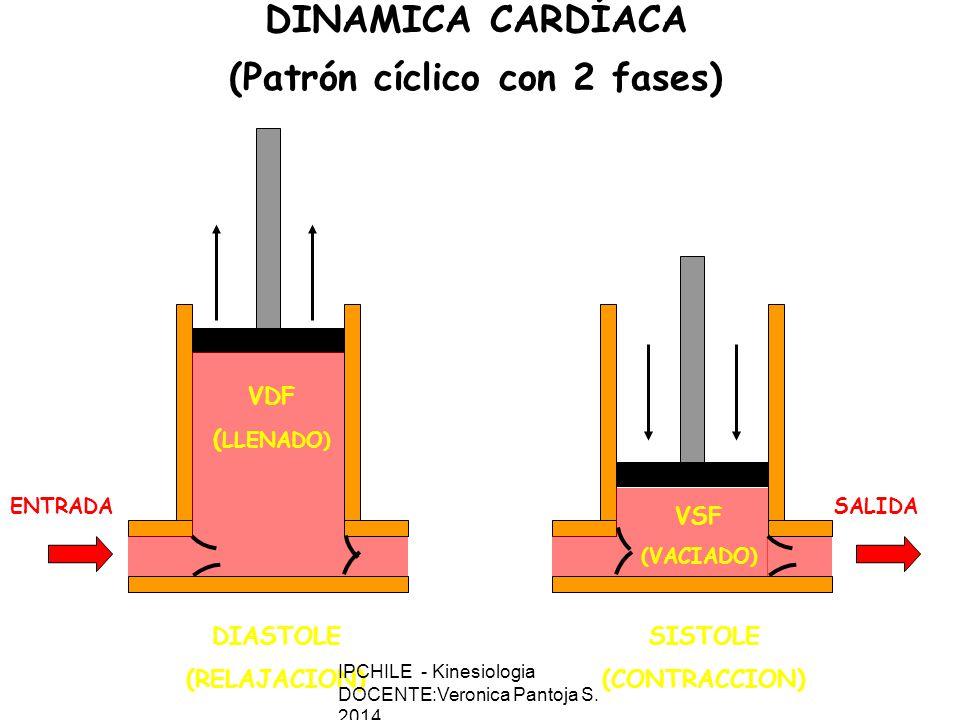 DIASTOLE (RELAJACION) VDF ( LLENADO) SISTOLE (CONTRACCION) VSF (VACIADO) ENTRADASALIDA DINAMICA CARDÍACA (Patrón cíclico con 2 fases) IPCHILE - Kinesiologia DOCENTE:Veronica Pantoja S.