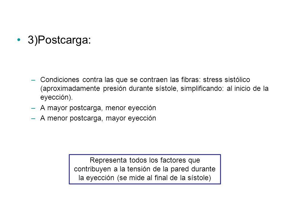 3)Postcarga: –Condiciones contra las que se contraen las fibras: stress sistólico (aproximadamente presión durante sístole, simplificando: al inicio de la eyección).