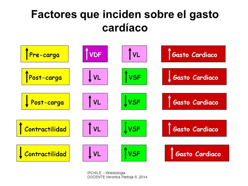Pre-cargaVDFVLGasto CardiacoPost-cargaVSFVLGasto CardiacoPost-cargaVSFVLGasto CardiacoContractilidadVSFVLGasto CardiacoContractilidadVSFVLGasto Cardiaco Factores que inciden sobre el gasto cardíaco VL= VOLUMEN LATIDO VSF=VOLUMEN FINAL DE SISTOLE VDF=VOLUMEN FINAL DE DIASTOLE IPCHILE - Kinesiologia DOCENTE:Veronica Pantoja S.