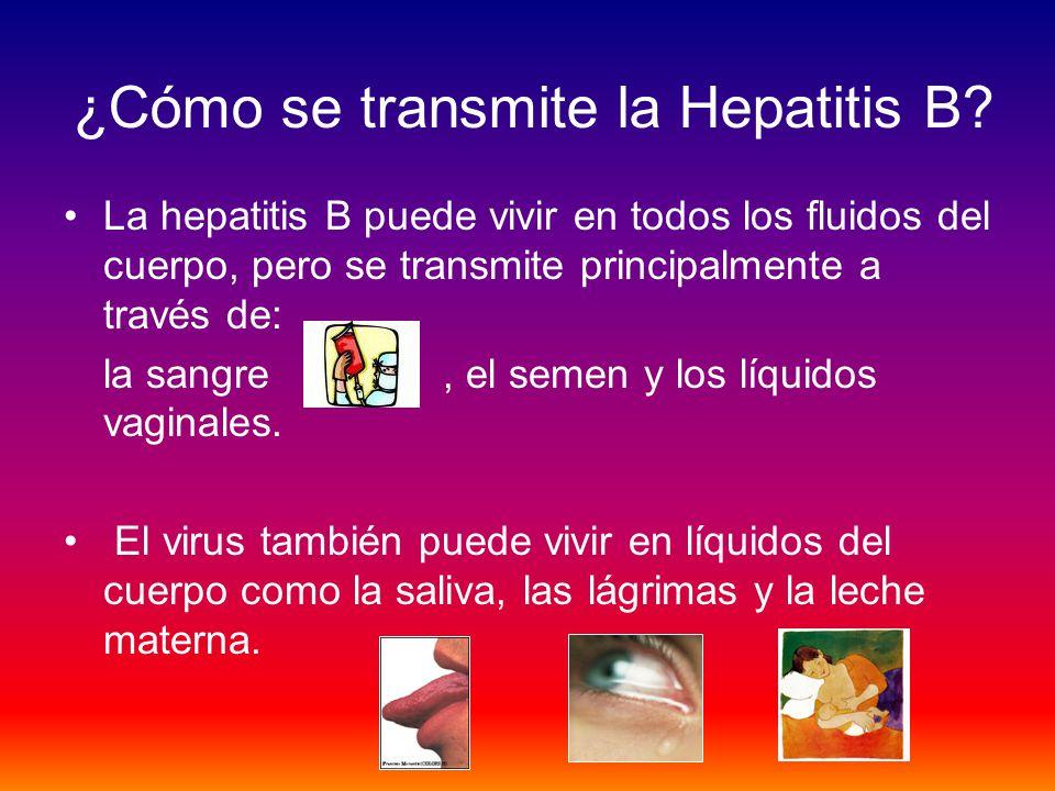 ¿Cómo se transmite la Hepatitis B? La hepatitis B puede vivir en todos los fluidos del cuerpo, pero se transmite principalmente a través de: la sangre