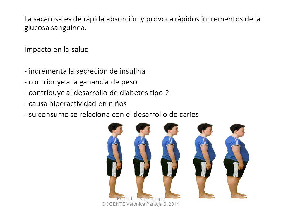 La sacarosa es de rápida absorción y provoca rápidos incrementos de la glucosa sanguínea. Impacto en la salud - incrementa la secreción de insulina -