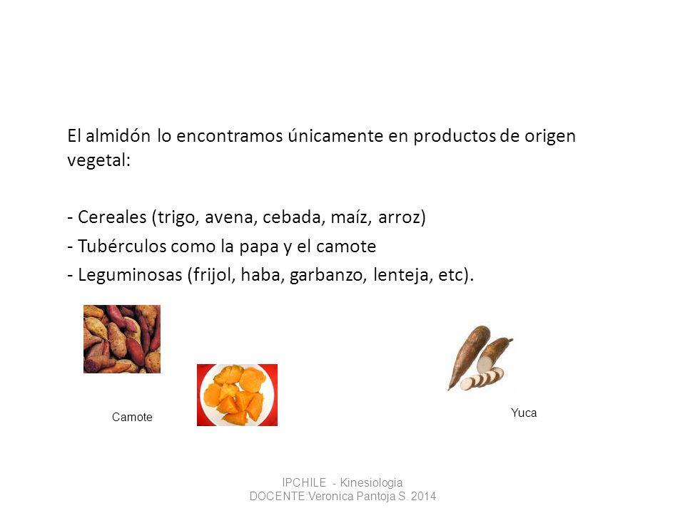 El almidón lo encontramos únicamente en productos de origen vegetal: - Cereales (trigo, avena, cebada, maíz, arroz) - Tubérculos como la papa y el cam