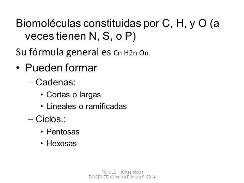 Biomoléculas constituidas por C, H, y O (a veces tienen N, S, o P) Su fórmula general es Cn H2n On. Pueden formar –Cadenas: Cortas o largas Lineales o