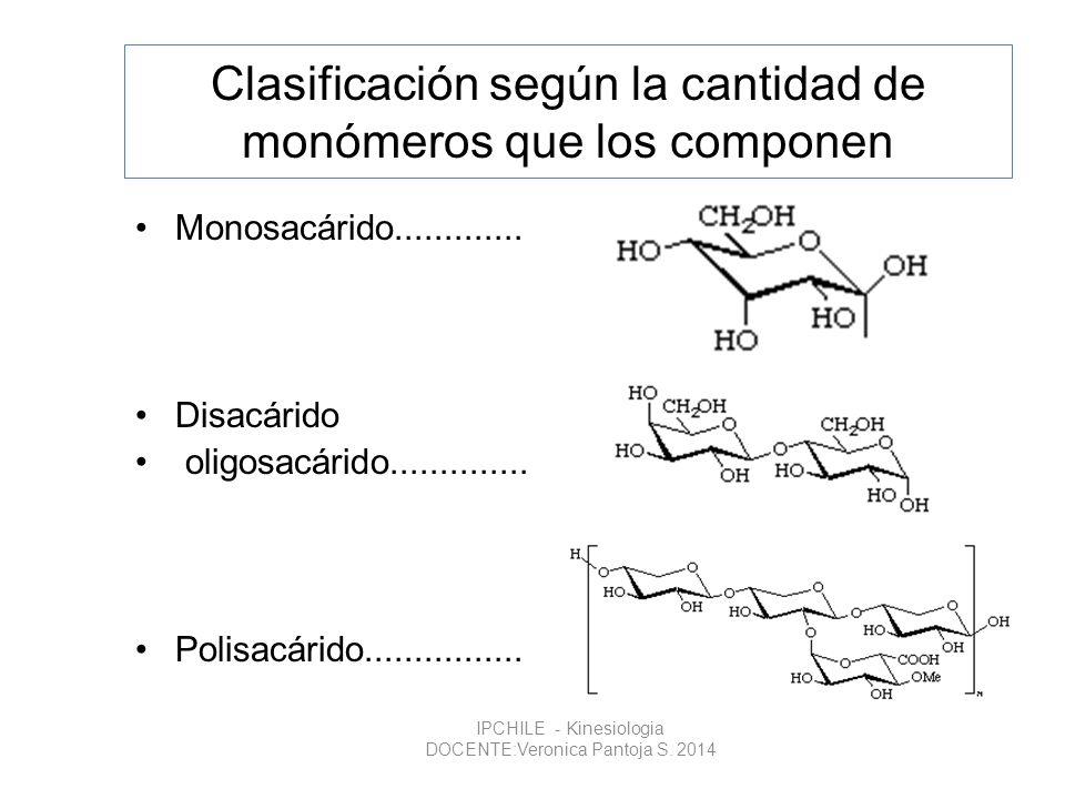 Clasificación según la cantidad de monómeros que los componen Monosacárido............. Disacárido oligosacárido.............. Polisacárido...........