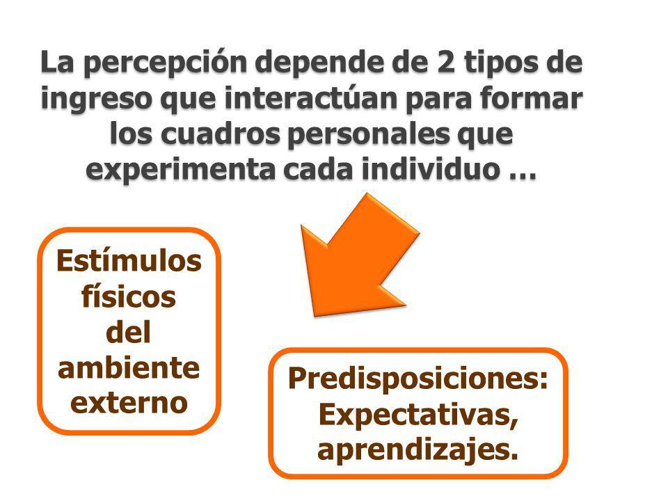 GfK ColombiaLa percepción de un país en un mundo de paradojaJulio 2010 La percepción depende de 2 tipos de ingreso que interactúan para formar los cuadros personales que experimenta cada individuo … Estímulos físicos del ambiente externo Predisposiciones: Expectativas, aprendizajes.