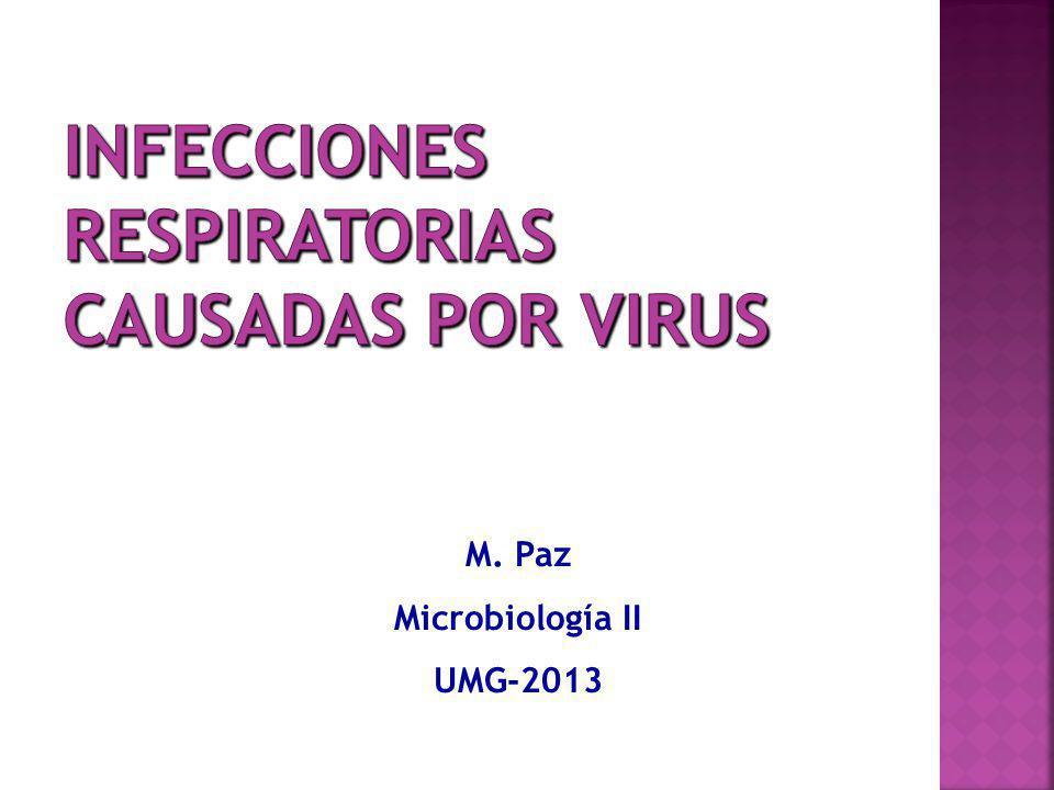 La amantadina (Antifludes, Fluviatol) y el Tamiflu solo sirven para tratar infecciones por virus Influenza.