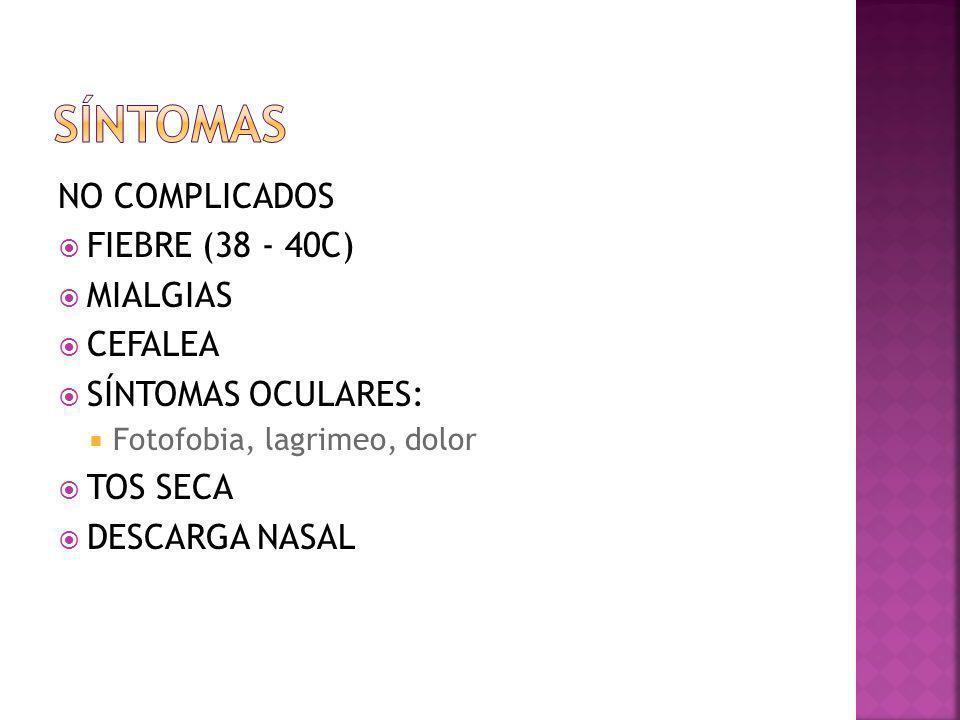 NO COMPLICADOS FIEBRE (38 - 40C) MIALGIAS CEFALEA SÍNTOMAS OCULARES: Fotofobia, lagrimeo, dolor TOS SECA DESCARGA NASAL