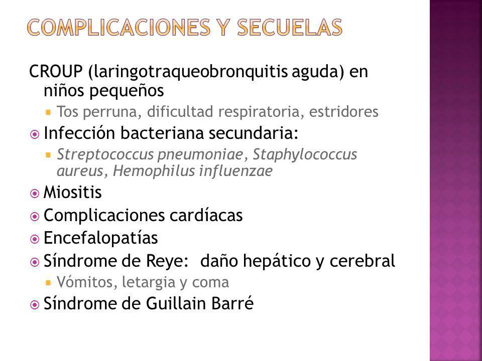CROUP (laringotraqueobronquitis aguda) en niños pequeños Tos perruna, dificultad respiratoria, estridores Infección bacteriana secundaria: Streptococc