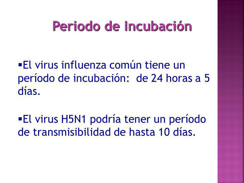 Periodo de Incubación El virus influenza común tiene un período de incubación: de 24 horas a 5 días. El virus H5N1 podría tener un período de transmis