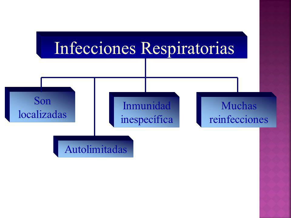 Resfriado común Rinovirus (picornavirus = ARN (+) icosahédrico desnudo Coronavirus (ARN +, con envoltura) Adenovirus Virus sincicial respiratorio (paramyxovirus = ARN – helicoidal) Alta posibilidad de complicaciones como bronquiolitis, crup, otitis y neumonía Enterovirus: Echo y coxsackie