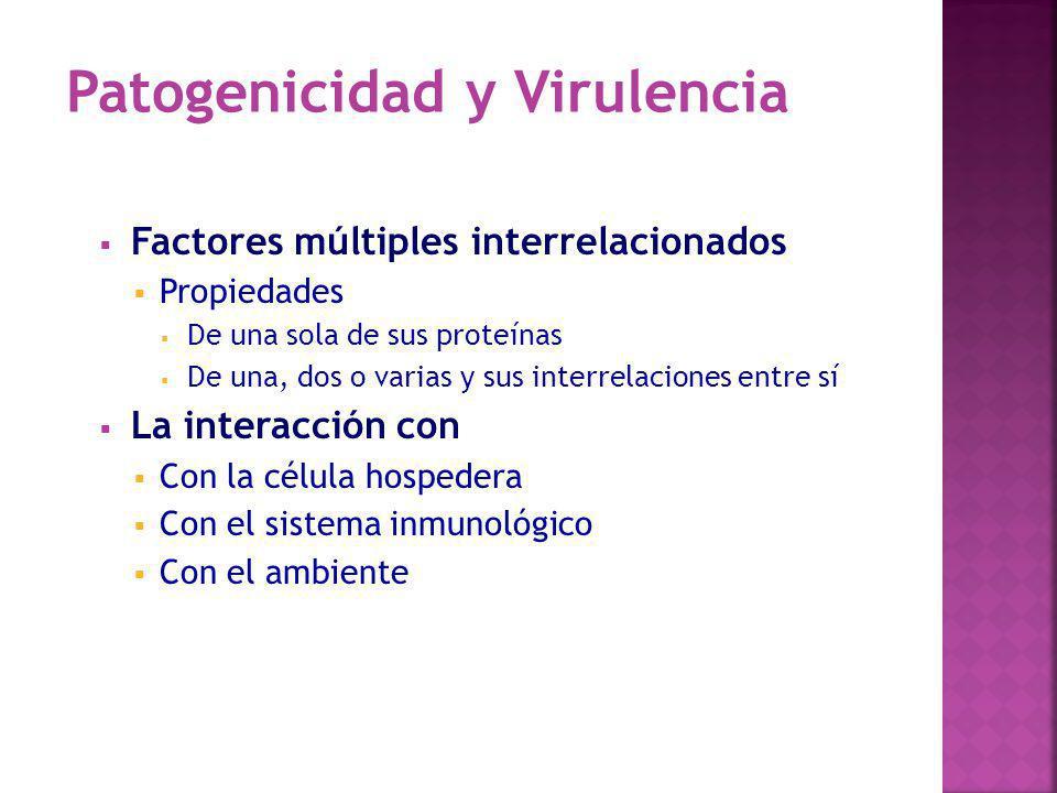 Factores múltiples interrelacionados Propiedades De una sola de sus proteínas De una, dos o varias y sus interrelaciones entre sí La interacción con C