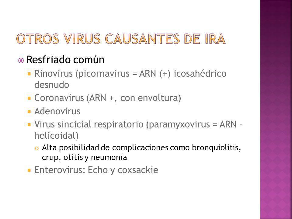 Resfriado común Rinovirus (picornavirus = ARN (+) icosahédrico desnudo Coronavirus (ARN +, con envoltura) Adenovirus Virus sincicial respiratorio (par