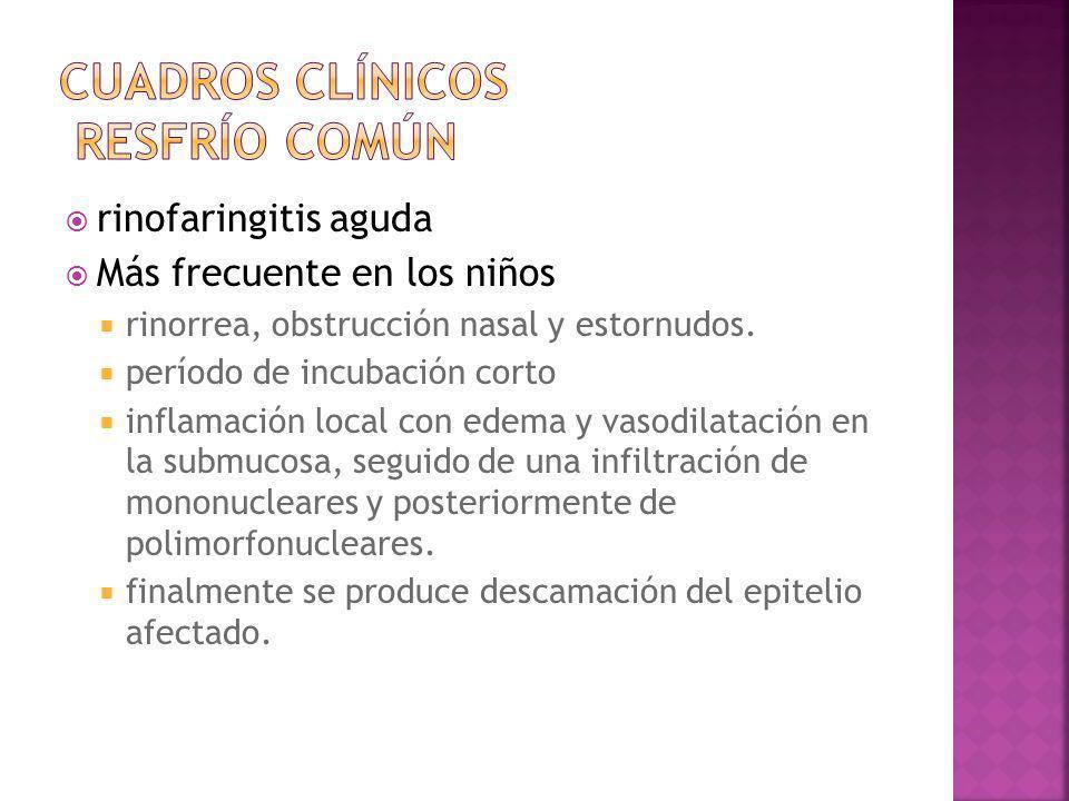 rinofaringitis aguda Más frecuente en los niños rinorrea, obstrucción nasal y estornudos. período de incubación corto inflamación local con edema y va