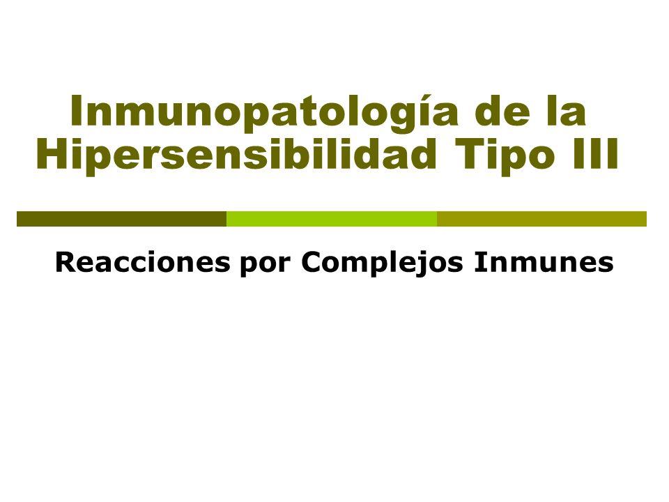 Inmunopatología de la Hipersensibilidad Tipo III Reacciones por Complejos Inmunes