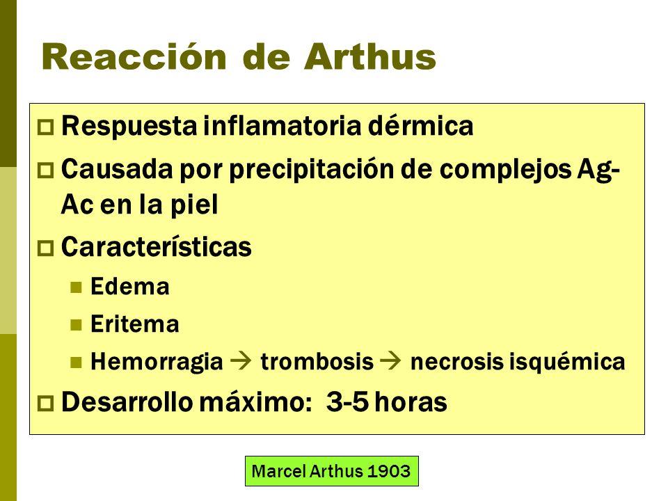 Reacción de Arthus Respuesta inflamatoria dérmica Causada por precipitación de complejos Ag- Ac en la piel Características Edema Eritema Hemorragia tr