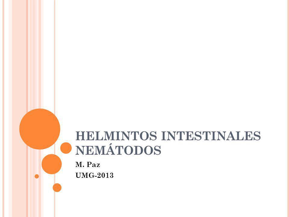 S ÍNTOMAS Relacionados con la carga parasitaria 10-20 gusanos pueden no ser notados a no ser en un examen de heces.