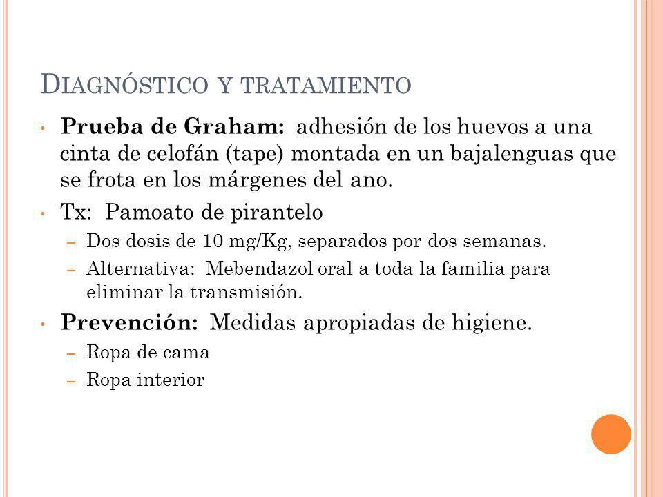 D IAGNÓSTICO Y TRATAMIENTO Prueba de Graham: adhesión de los huevos a una cinta de celofán (tape) montada en un bajalenguas que se frota en los márgen
