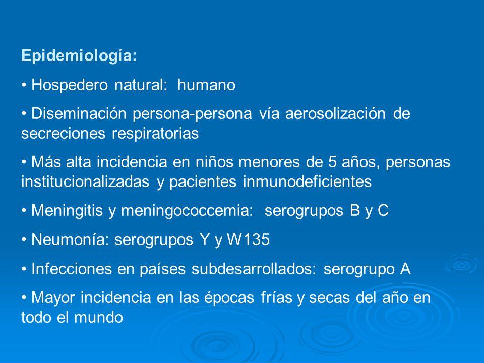 Epidemiología: Hospedero natural: humano Diseminación persona-persona vía aerosolización de secreciones respiratorias Más alta incidencia en niños men