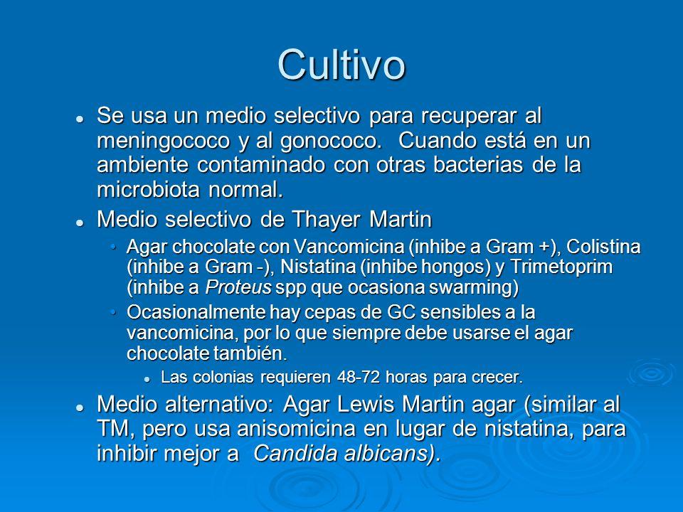 Cultivo Se usa un medio selectivo para recuperar al meningococo y al gonococo. Cuando está en un ambiente contaminado con otras bacterias de la microb