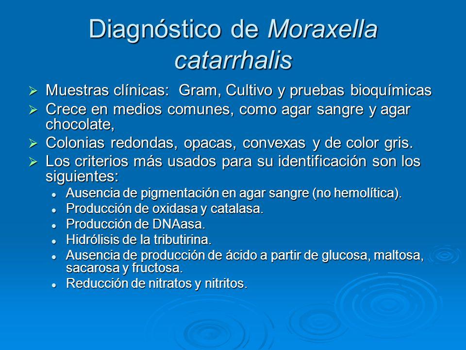 Diagnóstico de Moraxella catarrhalis Muestras clínicas: Gram, Cultivo y pruebas bioquímicas Muestras clínicas: Gram, Cultivo y pruebas bioquímicas Cre