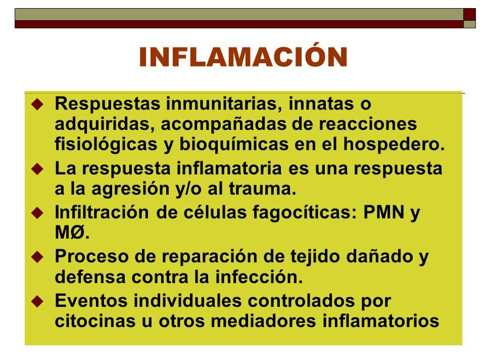 INFLAMACIÓN Respuestas inmunitarias, innatas o adquiridas, acompañadas de reacciones fisiológicas y bioquímicas en el hospedero. La respuesta inflamat