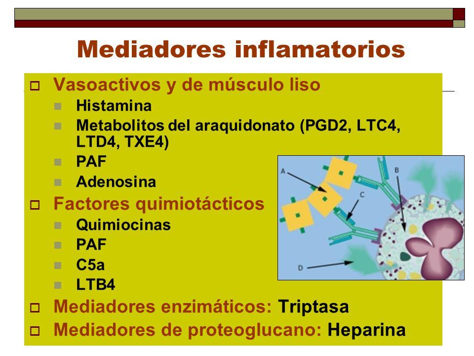 Mediadores inflamatorios Vasoactivos y de músculo liso Histamina Metabolitos del araquidonato (PGD2, LTC4, LTD4, TXE4) PAF Adenosina Factores quimiotá
