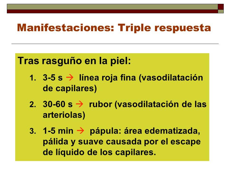 Manifestaciones: Triple respuesta Tras rasguño en la piel: 1. 3-5 s línea roja fina (vasodilatación de capilares) 2. 30-60 s rubor (vasodilatación de